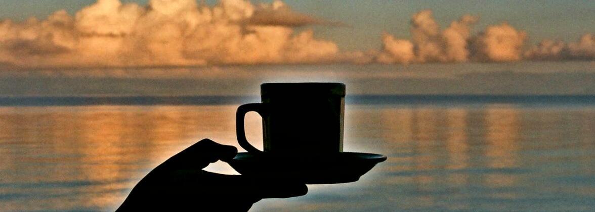 Чай на фоне заката